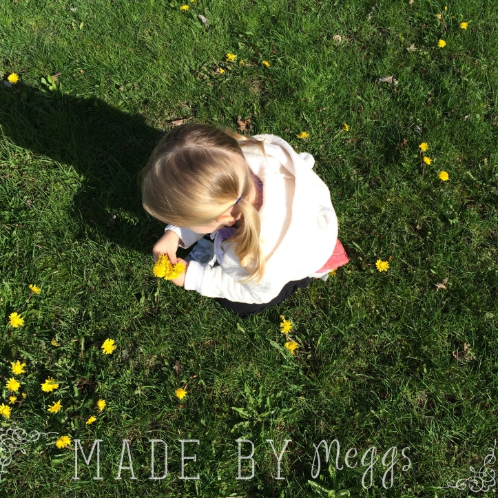 Goals for May 2015 - More at MadeByMeggs(dot)com