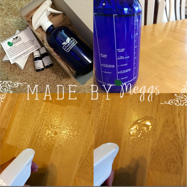 Review of Cleaning EssentialsDOTcom