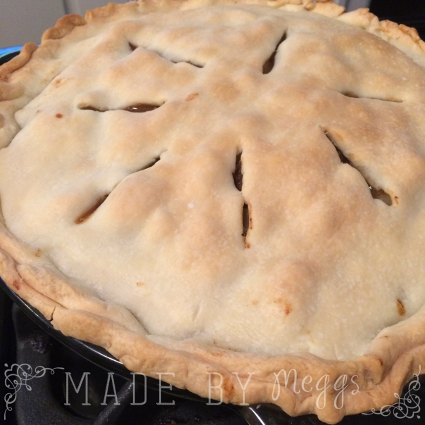 Steak and Ale Pie More at MadeByMeggsDOTcom1