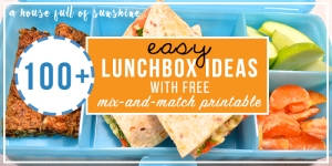 lunchbox-ideas-ahousefullofsunshine